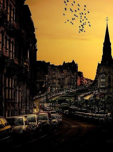 Sunset, Brussels, Belgium