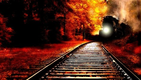 Autumn Train, Minnesota