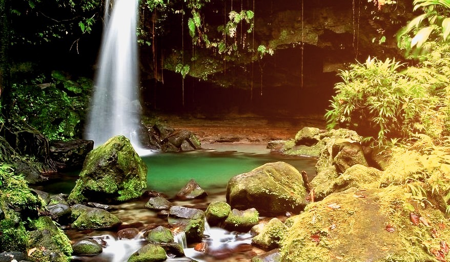 Emerald Pool - Island of Dominica.