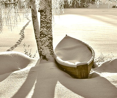 Snow Covered Lake, Stevens Point, Wisconsin