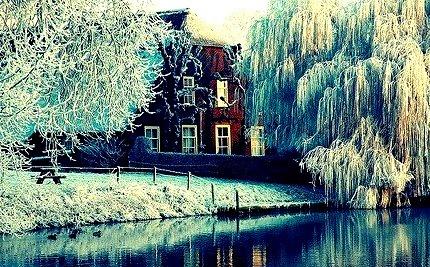 Frosty Morning,  Utrecht, Netherlands