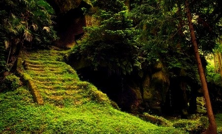 Mossy Stairs, Matsushima, Japan
