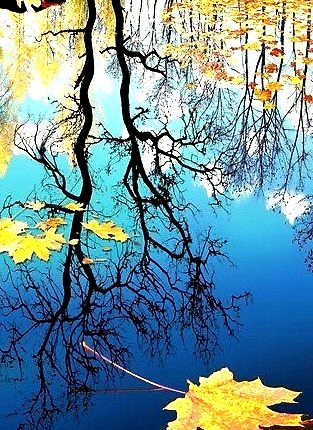 Autumn Reflection, Russian Federation