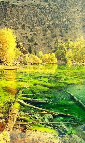 The green lakes of Naltar Valley in Karakorum Mountains, Pakistan