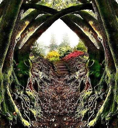 Garden Entrance, Redwood Regional Park, Oakland, California