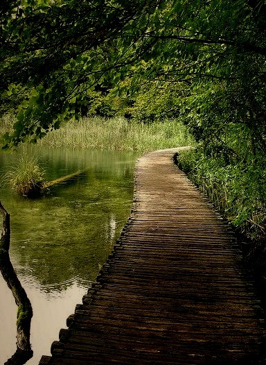The wooden path in Plitvice Lakes National Park, Croatia