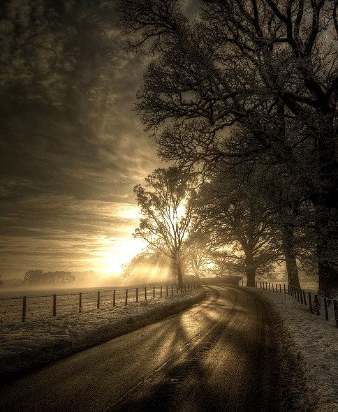 Winter in Eden Valley, Cumbria, England