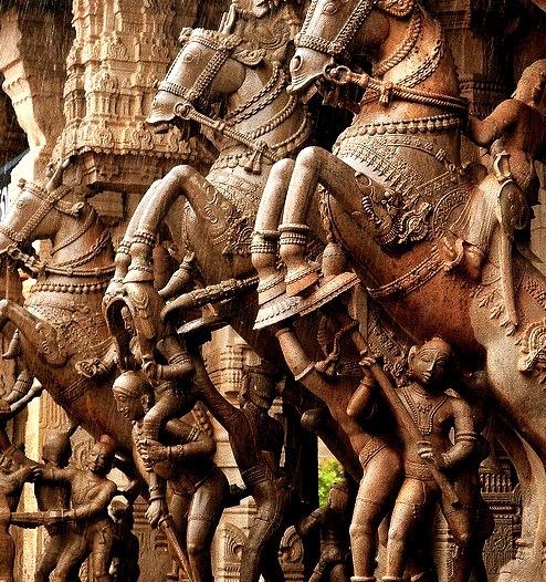 Horses in the rain at Sri Ranganathaswamy Temple / India