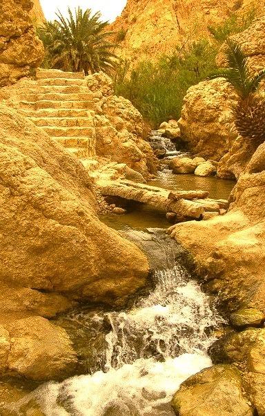 The mountain oasis of Chebika / Tunisia
